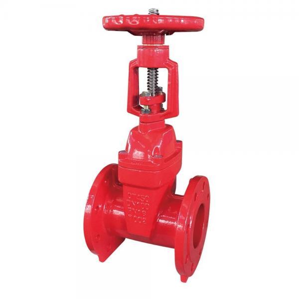 Rexroth S6A1.0  check valve #1 image