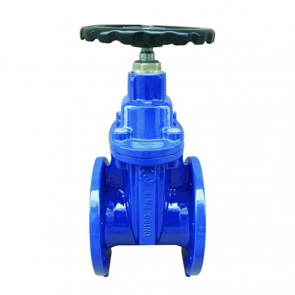 Rexroth S6A1.0  check valve #2 image