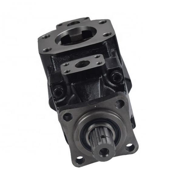 DENISON T6E-050-2R03-A1 vane pump #2 image